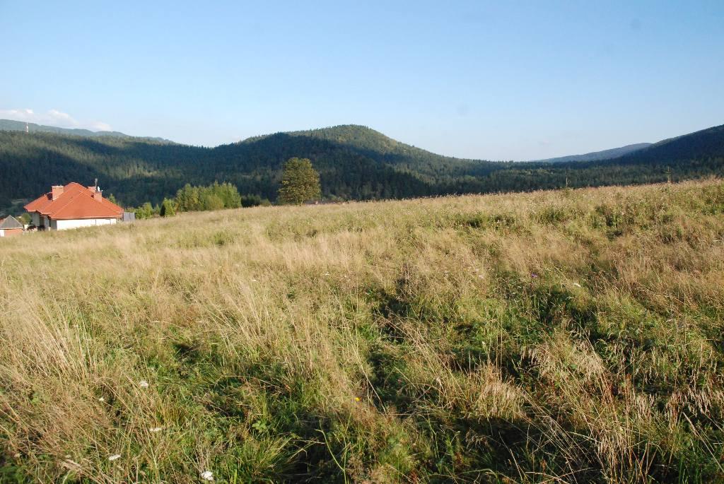 Dzialki, Podkarpackie, Cisna, sprzedaz, 1219