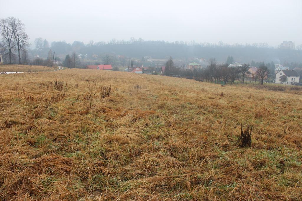 Dzialki, Podkarpackie, Sanok, sprzedaz, 1324