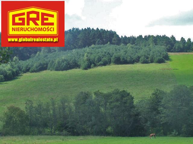 Dzialki, Podkarpackie, Czaszyn, sprzedaz, 589