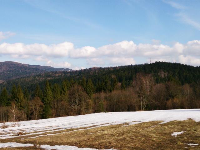 Dzialki, Podkarpackie, Cisna, sprzedaz, 693